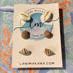 Gorgeous Earring Set.  Set of three shell studs!
